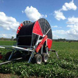 Hardhose Irrigation System