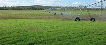 Broadacre Irrigation